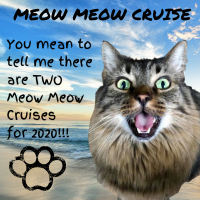 MEOW MEOW CRUISE (1).png